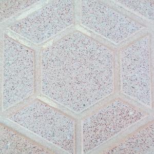 hexagonalsalmon